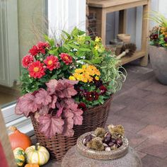 So holen Sie sich den Herbst auf Balkon und Terrasse