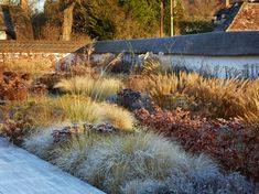Wiltshire garden   Tom Stuart-Smith