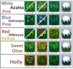 ac AC: New Leaf Bush Chart More Buying Birkenstock Sandals At A Discount There are many sources of d Animal Crossing Qr, White Azalea, Acnl Paths, Motif Acnl, Flowering Bushes, Ac New Leaf, Happy Home Designer, Leadership, Fantasy Art