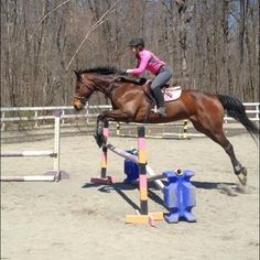 Emily is jumping huge on her pony!!!