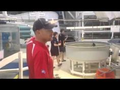 Tour of cairns marine collection facility