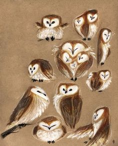 controsensi:  Owl illustrations by Marion Bulotmarionbulot