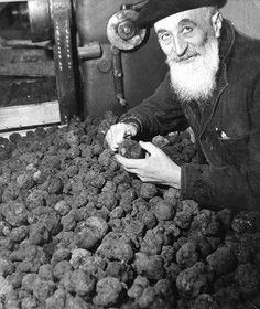 #Robert Doisneau Photography|A truffle harvest |¤ Robert Doisneau