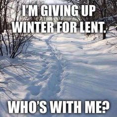 After looking forward to 30-40 cm of snow today,humour keeps me grounded and humble