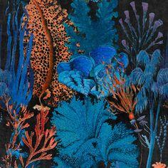 Mind the Gap Coral Reef Behang: Hier Verkrijgbaar WP20358 - Luxury By Nature Mind The Gap, Modern Wallpaper, Of Wallpaper, Pattern Wallpaper, Coastal Wallpaper, Amazing Wallpaper, Sea Floor, Nautical Design, Coral Reefs