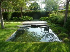 The Dark Mirror: A Backyard Reflecting Pool in Eastern Europe