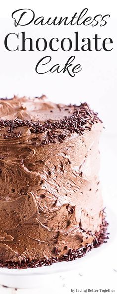 This Dauntless Chocolate Cake was inspired by the Divergent Series and is also…