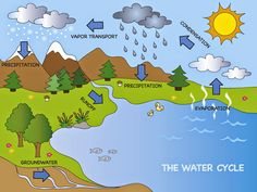 World Water Day is March Earth Day is April Celebrate with Earth's Water Supply Lesson Plans for Elementary. Water Cycle For Kids, Water Cycle Project, Water Cycle Poster, Water Cycle Diagram, Rain Cycle, Weather Crafts, Weather Activities, Cycle Drawing, Harry Potter Film