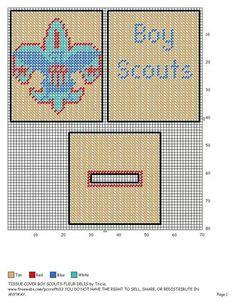 Boy Scouts of America tbc
