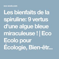 Les bienfaits de la spiruline: 9 vertus d'une algue bleue miraculeuse ! | Eco Ecolo pour Écologie, Bien-être Bio et la Santé au Naturel