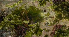 Susan Derges, 'Tide Pool 38', 2015