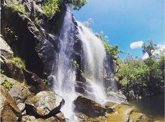 Chasing waterfalls with @courtneyjaclyn__ #CooktownTNQ