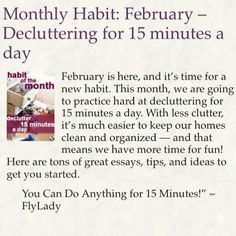 Monthly Habit for February Fly Lady Cleaning, Zone Cleaning, Cleaning Hacks, Cleaning Schedules, Bloom Planner, Fly Quotes, Life Organization, Organizing Life, Flylady
