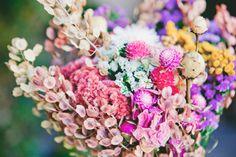 Pretty dried flowers