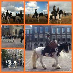 Gijs in action as drum horse at Prinsjesdag 2013