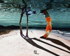 Surreal Animals Photo Manipulations by Karen Cantú Q #photography