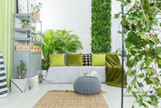 What Is Wellness Architecture? Home Design That Promotes Healthy Living What Is Wellness Architecture? Home Design That Promotes Healthy Living Home, House Design, House Architecture Design, Low Maintenance Indoor Plants, Green Home Decor, Interior Garden, Trending Decor, Plant Decor, Interior Trend