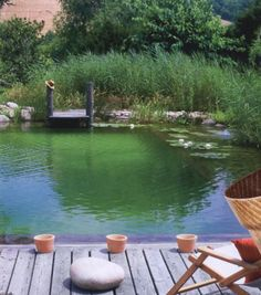 Beautiful all natural chemical free swimming pool