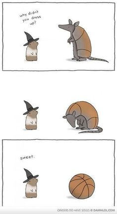 why didn't you dress up / lizclimo :: animals :: Halloween :: costume :: armadillo :: comics (funny comics & strips, cartoons) Funny Animal Comics, Animal Memes, Funny Comics, Funny Animals, Cute Animals, Liz Climo Comics, Funny Cute, Hilarious, Animal Antics
