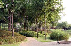 Jardin de Montréal à Shanghai : Claude Cormier + Associés