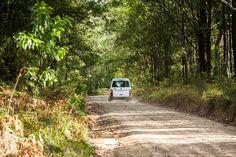 Off the tarmac roads | VW Trakkadu 400 campervan