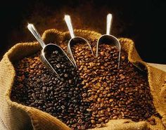 Coffee Bean Art http://www.coffeeaddict.us