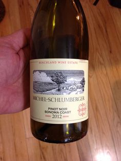 Michel-Schlumberger 2012 Sonoma Coast Pinot Noir.  Even this wine comes from California, it's much more reminiscent of the Côtes-de-Nuit.  Light and fruity, with tart red fruit on the palate and earthy notes on the finish.  I like this better than a lot of CA Pinots that cost 3X the price.  $16.00 on WTSO.com. 90 pts!