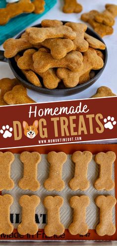 A homemade peanut butter and pumpkin dog treat made with just 5 ingredients! This simple and delicious one bowl recipe will be a big hit. Follow these simple tips and tricks for recipe variations! Save this pin for later! Pumpkin Dog Biscuits, Pumpkin Dog Treats, Doggie Treats, Homemade Dog Treats, Dog Biscuit Recipes, Dog Treat Recipes, Easy Recipes, Dog Food Recipes, Best Peanut Butter