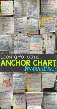 Check out this blog post for tons of excellent anchor charts!