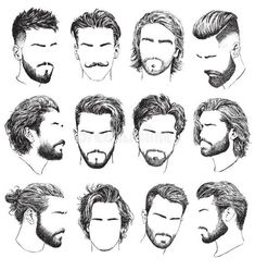 Highly Detailed Hand Drawn Mens Hairstyles Beards And Mustaches Vector Set. Stock Vector Illustration of hipster beauty: 161738063 Mens Hairstyles With Beard, Hair And Beard Styles, Hairstyles Haircuts, Haircuts For Men, Curly Hair Styles, Drawn Hairstyles, Beards And Hair, Beard Styles For Men, Mens Haircut Styles