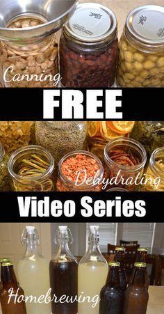 Free classes in dehydrating, homebrewing and more!
