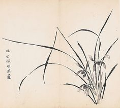 1703. Orchids in Rain. From the Ten Bamboo Studio Collection of Calligraphy and Painting, vol. 2. monochrome woodblock.  After a painting by Wen Zheng-ming 1470-1559 China.