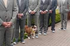 I'm totally against dogs at weddings, but this is precious.