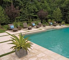 Possible idea for the backyard.