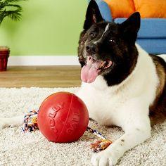 da0c0fa2a4 Jolly Pets Romp-n-Roll Dog Toy