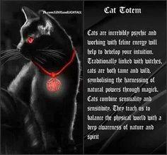 Black cats as power totem animals. Cat Spirit Animal, Animal Spirit Guides, Wicca Witchcraft, Wiccan, Power Animal, Spiritus, Animal Totems, Book Of Shadows, Cat Art