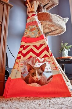 Lets Do it! Amazing DIY Pet Projects ,Cat Teepee