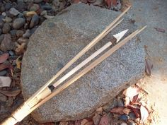 Aboriginal Spear Fishing http://paleoplanet69529.yuku.com/topic/28556 ...