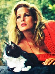 ursula andress submitted by simplymagdorable - almost famous cats Catherine Deneuve, Rare Cats, Cats And Kittens, Sophia Loren, Celebrities With Cats, Celebs, Star Trek Posters, Dalida, Son Chat