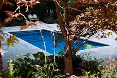 Master Pools Guild | Residential Pools and Spas - Lap Pools / Swim in Place Pools Gallery