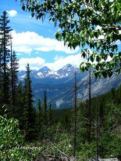 Summer is closer than it looks! by altamons, via Flickr; South Baldy Pass, Kananaskis, Alberta, Canada