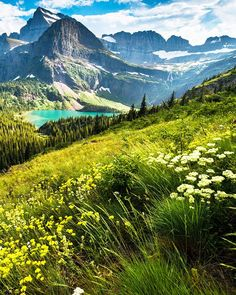 Glacier National Park in is still as wild as when Lewis and Clark first saw it more than 200 years ago. Ready to be left just as wonderstruck? Best Places To Camp, Places To Visit, Alaska Travel, Alaska Trip, Glacier National Park Montana, Hidden Places, Lewis And Clark, Great Backgrounds, National Parks Usa