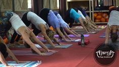 Yoga is also a spiritual and healing retreat to help you discover your true self. It teaches you to respect what you have and honor the thing that you don't possess. Yoga Teacher Certification, Yoga Teacher Training, Yoga Courses, Rishikesh, Respect, Spirituality, Healing, Student, Therapy