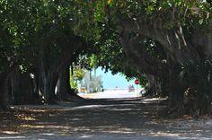 Banyan Street  Boca Grande, Gasparilla Island, Florida