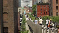 High Line Park in New York: Dschungel zwischen Wolkenkratzern
