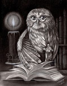 Todo Brennan: 'The Book Owl' what an awesome tattoo idea for an obsessive book lover