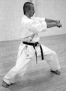 Sokumen morote zuki Martial Arts, Combat Sport, Martial Art