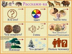 Drumphunk coqui selection n.jorge montia present house nation wav aif dvdriso Learn Russian, Animal Crafts For Kids, Kindergarten, Language, Kids Rugs, Teaching, Activities, Words, School