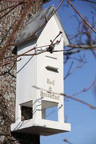 Fågelholk-Bed and Breakfast