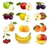 Gruppo con diversi tipi di frutta. Vettore.  stock photography